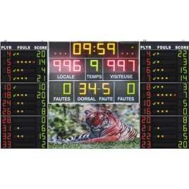 MDG D18 - Electronic scoreboard sport with 18 digits